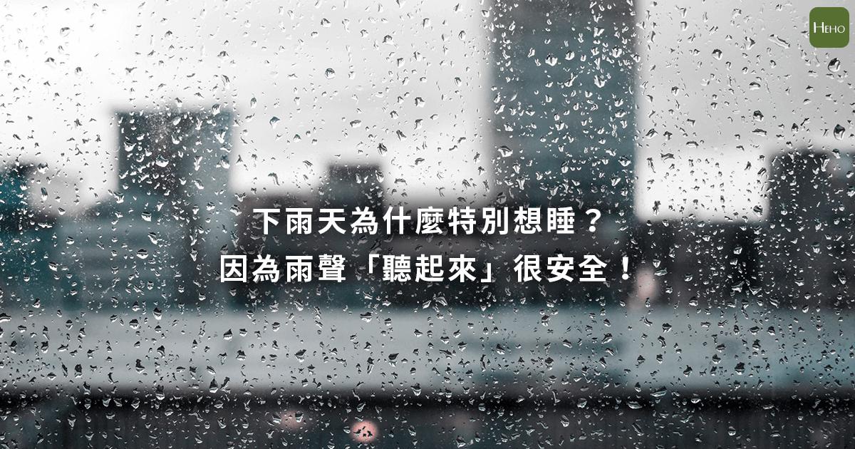 下雨天為什麼特別想睡?因為雨聲「聽起來」很安全!