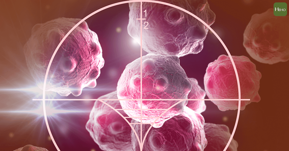 《Nature》顛覆百年認知研究!科學家發現癌細胞沒那麼愛「吃糖」