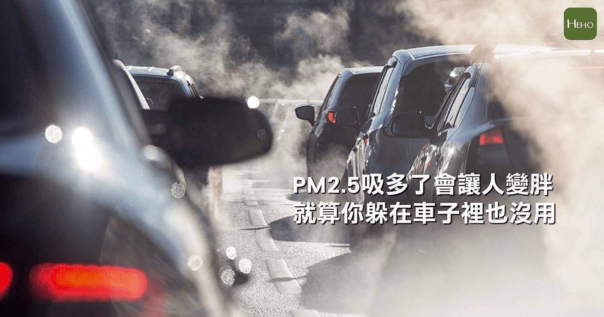 PM2.5吸多了會讓人變胖,就算你躲在車子裡也沒用