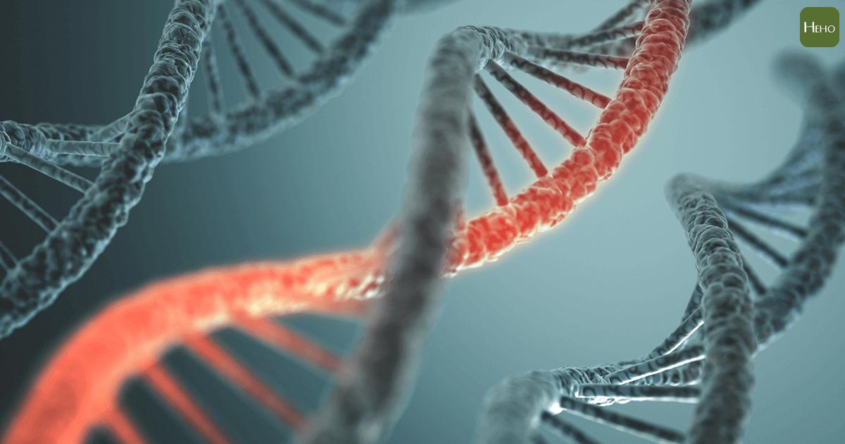 基因突變02-01
