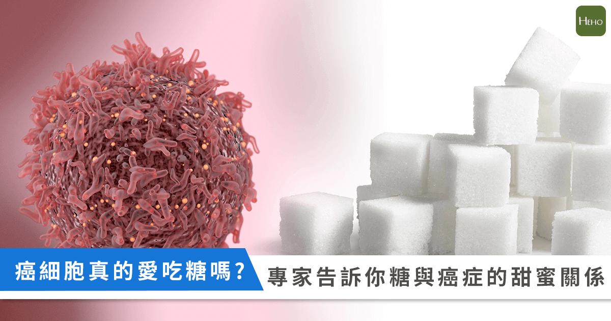 癌細胞_糖_關係