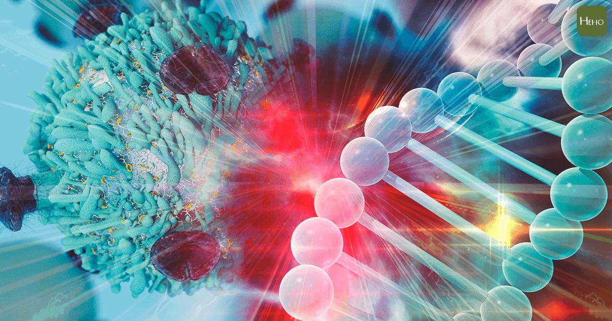 癌細胞_DNA