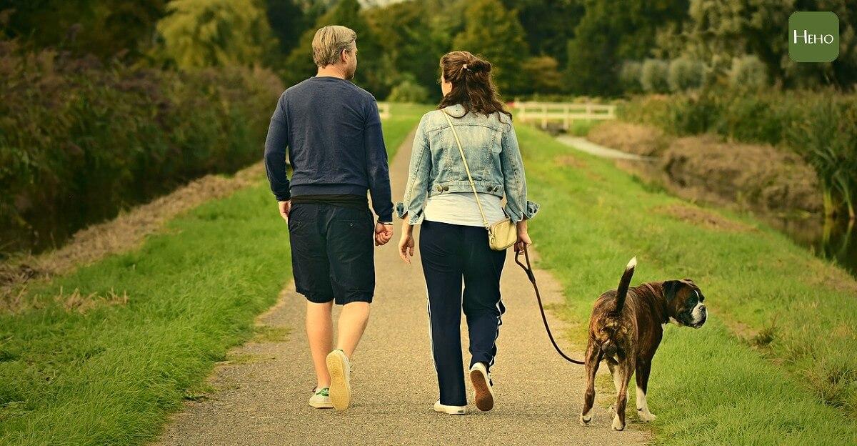 走路是最好的有氧運動!每日30分鐘降三高又防癌