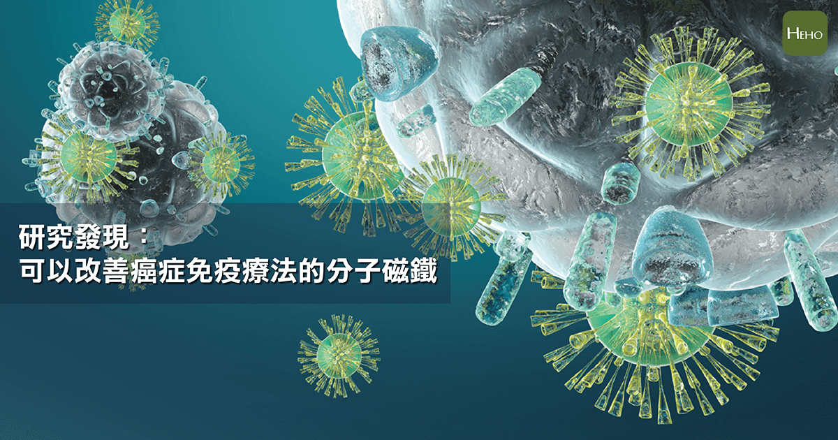 免疫細胞-01