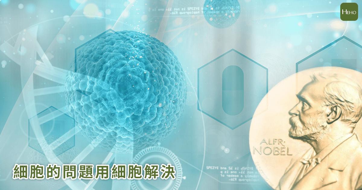 諾獎頒給抗癌研究 「細胞的問題用細胞解決」成未來醫療顯學