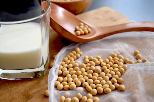 """適合愛美人士喝的豆漿食譜 (示意圖)/ 圖片來源:<a href=""""https://pixabay.com/photos/soy-milk-soy-soybean-soy-milk-2084018/"""">pixabay</a>"""
