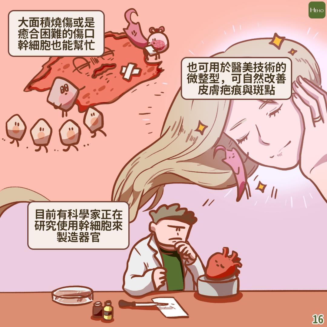 健康未來真的能儲存嗎?幹細胞銀行大解密