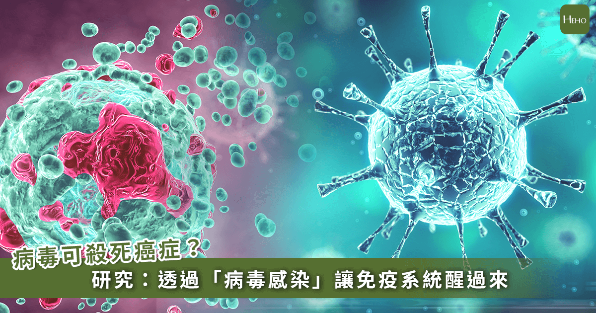 用病毒就能殺死各種癌症 美國研究:喚醒你的免疫系統
