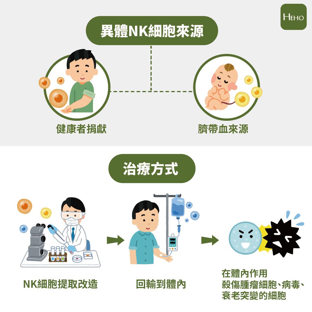 新冠肺炎解藥就在人體內!專家吐露:殺手NK細胞有抗病毒絕招