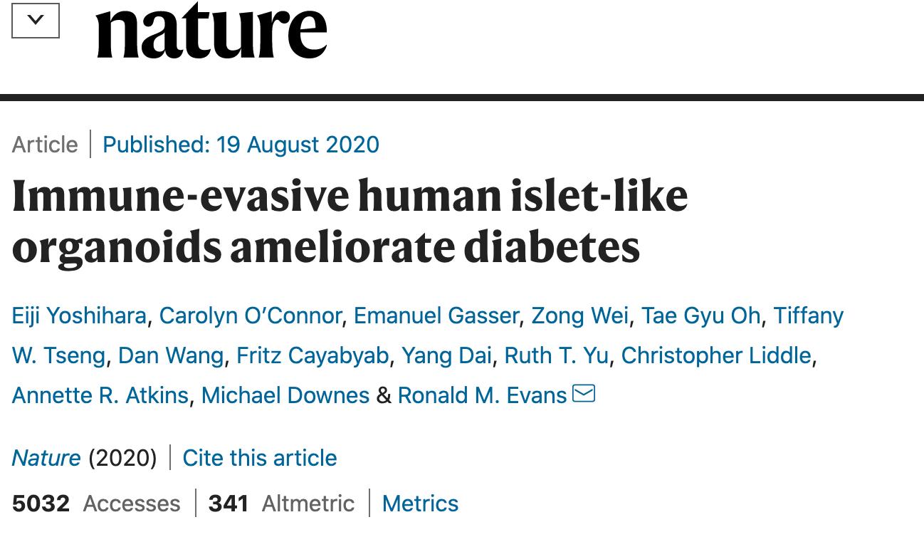 糖尿病 一 型