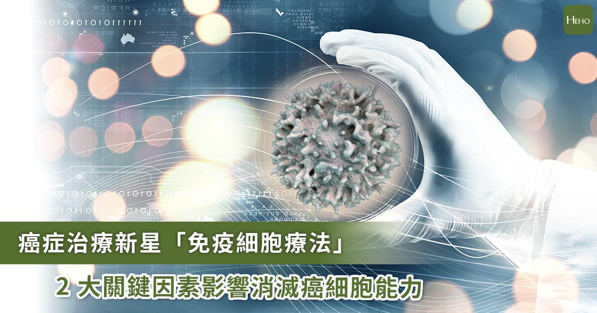 20201224_免疫細胞治療有望成為抗癌解藥?2大關鍵因素使它無法取代正規治療
