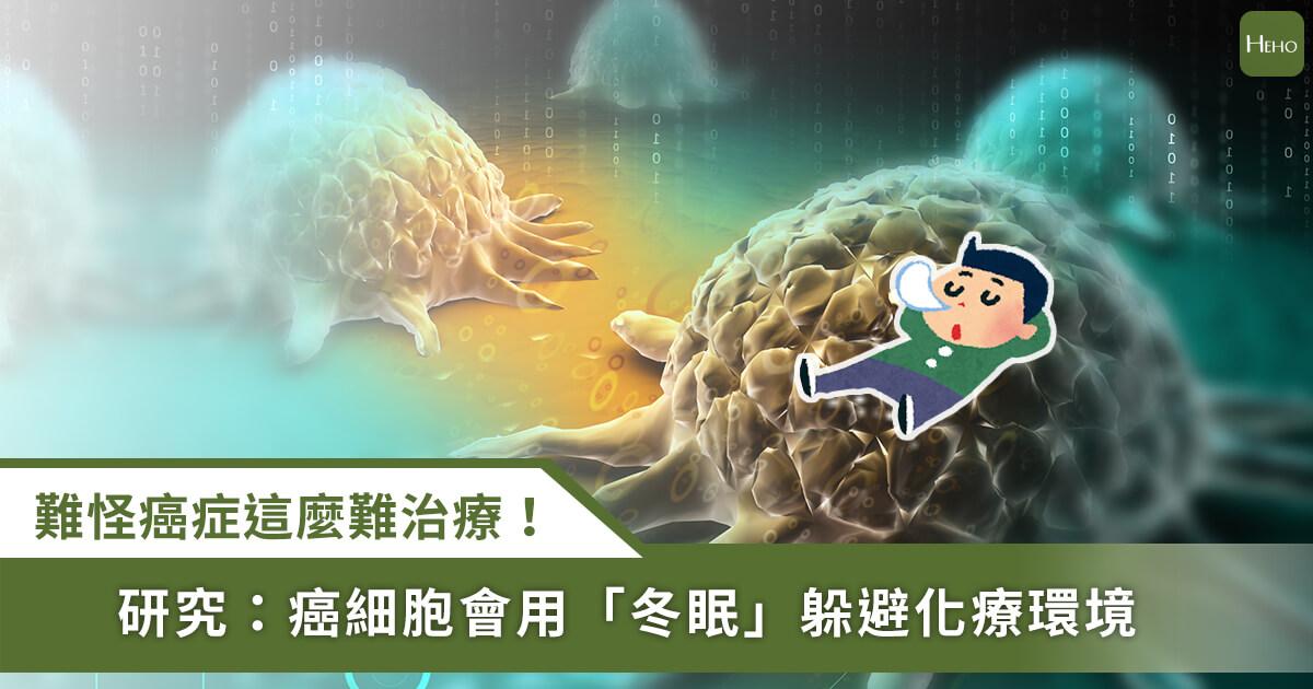 20210118_難怪癌症那麼難治!《細胞》研究發現:癌細胞會全體冬眠躲化療