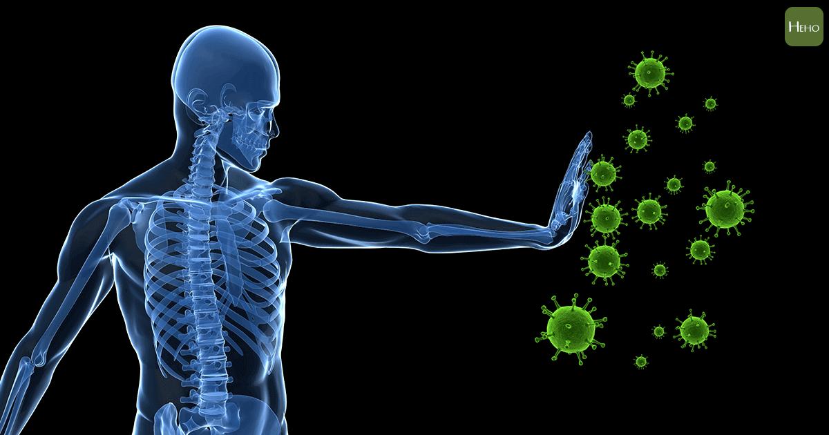 褐藻醣膠抗癌潛力
