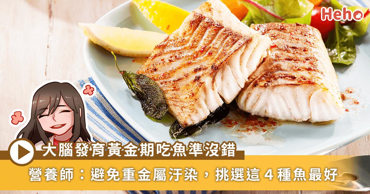 0406-營養師節目_魚